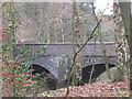 SP1097 : Railway bridge, Blackroot Pool, Sutton Park by Michael Westley