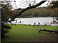 SP1097 : Blackroot Pool, Sutton Park by Michael Westley