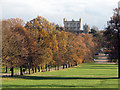 SK5339 : Wollaton Hall by John Sutton