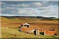 NT7050 : Sheepfold by Horse Kaim, Polwarth Moss : Week 47