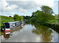 SJ6541 : Shropshire Union Canal at Coxbank, Cheshire by Roger  Kidd