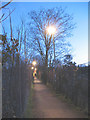 TQ3669 : Footpath through the allotments by Stephen Craven