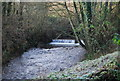 ST0440 : Weir on the Washford River by N Chadwick