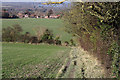 SP7701 : Chiltern Way looking towards Bledlow by Mike Baldwin