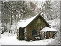 ST5678 : Woodland cottage, Blaise Castle by George Evans
