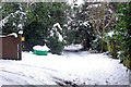 TQ3438 : Cuttinglye Lane by Robin Webster