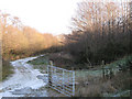 SX8376 : Track along base of clay waste heap by Robin Stott