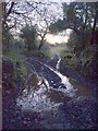 SW9763 : Footpath, Demelza by Derek Harper