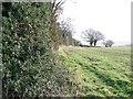 ST6162 : Footpath, Stanton Wick by Maigheach-gheal