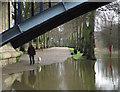 SJ4812 : The Severn River Walk : Week 3