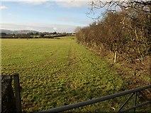 SX0360 : Field and field boundary near Little Trevellion by Derek Harper