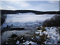 NJ5903 : Ice on roadside pond by Stanley Howe
