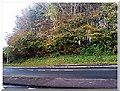 SX5555 : Top of Hillcrest Drive, where Crana Castle stood, you can just make out the outer ring by lor edwards