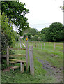 SJ6151 : Stile and track near Stoneley Green, Cheshire by Roger  Kidd