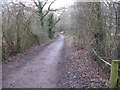 TQ1330 : The Downs Link path heading WNW to the A 29 by Dave Spicer