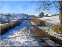 SO2554 : Bend in Upper Hergest Road by Trevor Rickard