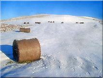 SO2455 : Bales of bracken on Hergest Ridge by Trevor Rickard
