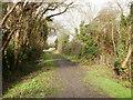 TL4364 : Start of a walk along Gun's Lane by Peter S