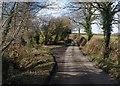 SX3180 : Lane, Brockle Ford by Derek Harper