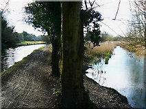 SU3967 : Kennet and Avon canal and the River Kennet, east of Kintbury by Brian Robert Marshall
