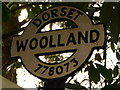 ST7707 : Woolland: detail of finger-post by Chris Downer