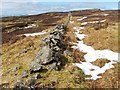 NS4674 : Dry-stone wall by Lairich Rig