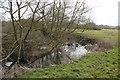 SJ6647 : River Weaver near Austerston by Peter Styles
