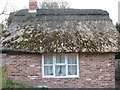 SJ6269 : Thatched farm building (1) by Dr Duncan Pepper