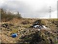 NS7760 : Dumped rubbish, Holytown by Richard Webb
