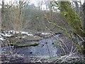 NS5751 : Upper mill dam by Kenneth Mallard