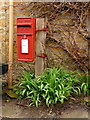 SY5195 : Nettlecombe: postbox № DT6 10 by Chris Downer