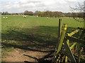TQ9631 : Footpath junction on Saxon Shore Way near Smith's Farm by David Anstiss
