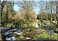 TR2943 : Waterfalls on the river Dour, Kearsney Abbey : Week 14