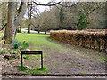 SD8602 : Boggart Hole Clough - Oliver Clough by David Dixon