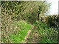 ST7157 : Footpath south east of the Byway by James Ayres