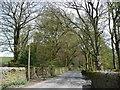 SE0339 : Slaymaker Lane by Christine Johnstone