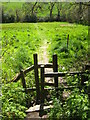 SW7829 : Stile on the footpath at Carlidnack by Rod Allday