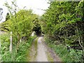 SJ9795 : Pudding Lane by Gerald England