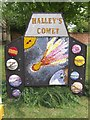 SK2632 : Halley's Comet at Etwall Well Dressing 2010 by John M