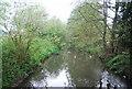 TQ1730 : River Arun: upstream by N Chadwick
