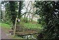 TQ1829 : Footbridge across the River Arun by N Chadwick