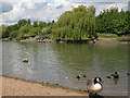 TQ4181 : Lake in Beckton District Park by Stephen Craven
