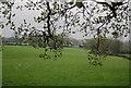 TQ1928 : Rickfield Farm seen through the trees by N Chadwick