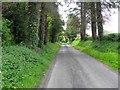 H4022 : Derryloon Road by Kenneth  Allen