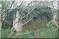 SU4199 : An Ivy top by Bill Nicholls