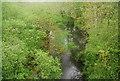 TQ0932 : River Arun: downstream by N Chadwick