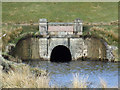 NS2572 : Water tunnel at Loch Thom by Thomas Nugent