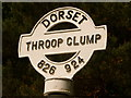SY8292 : Throop: detail of finger-post by Chris Downer