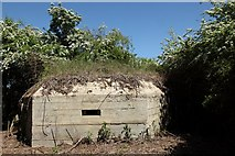 ST9160 : Pillbox in woodland beside Kennet and Avon Canal by Doug Lee