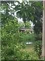 SK4429 : A glimpse of the river and bridge at Cavendish Bridge by John M